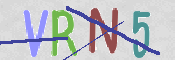 CAPTCHA (for security)