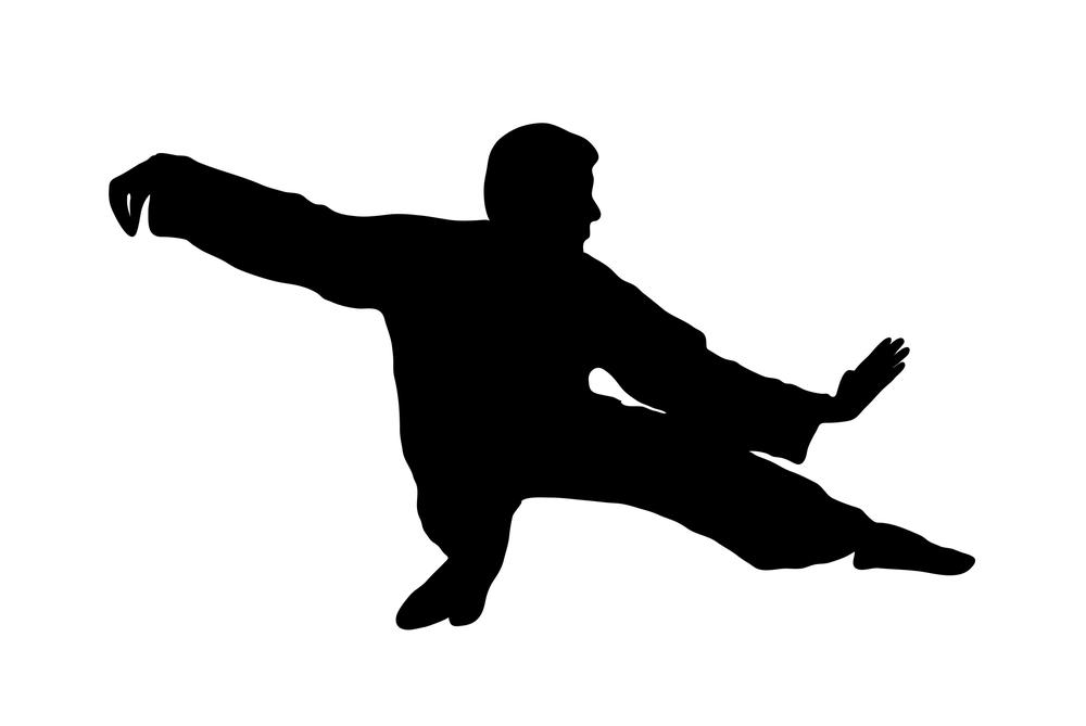 tai-chi-low-single-whip-silhouette